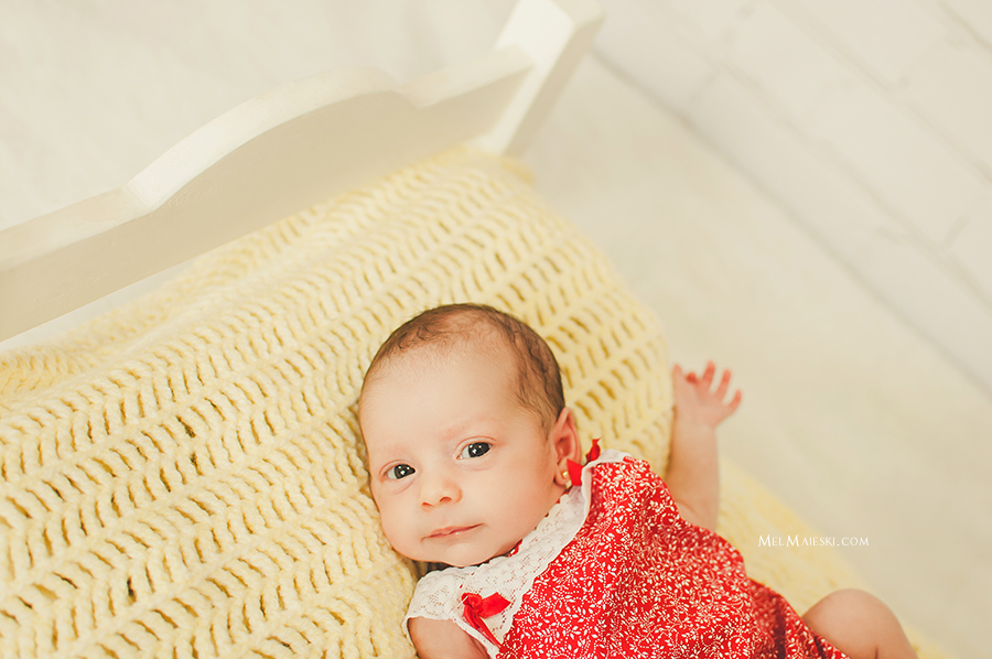 04-ensaio-newborn-gemeas-jaragua-do-sul