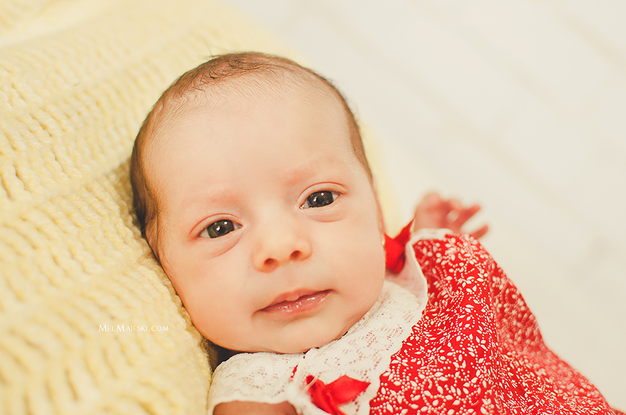 05-ensaio-newborn-gemeas-jaragua-do-sul